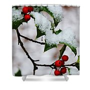 Holly Tree And Snow Shower Curtain