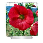Hollyhock Hill Shower Curtain