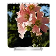 Hollyhocks 1 2017 Shower Curtain