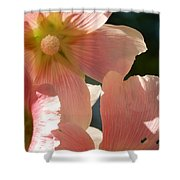 Hollyhocks 5 2017 Shower Curtain