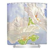 Hollyhocks And Sky Shower Curtain