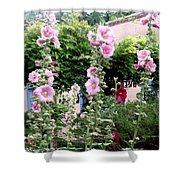 Hollyhocks Taos New Mexico Shower Curtain