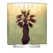 Hollywood Gold Shower Curtain