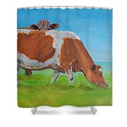 Holstein Friesian Cow And Brown Cow Shower Curtain