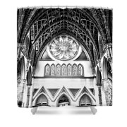 Holy Name Cathedral Chicago Bw 06 Shower Curtain
