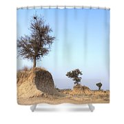 Holy Trees Shower Curtain