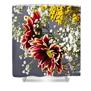 Holy Week Flowers 2017 5 Shower Curtain