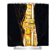 Homage To Petra Shower Curtain by Richard Young