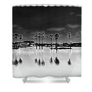 Homage To The Moon Shower Curtain