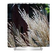 Home Behind The Grass Shower Curtain