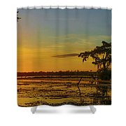 Home Home On The Swamp Shower Curtain