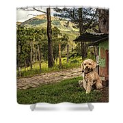 Home Owner Shower Curtain