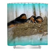 Home Sweet Home #2 Shower Curtain