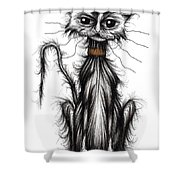 Homeless Cat Shower Curtain