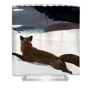 Homer Fox Hunt 1893 Shower Curtain by Granger