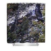 Homeward  Shower Curtain