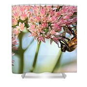 Honey Bee 2 Shower Curtain