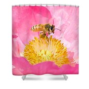 Honey Bee Collecting Pollen Shower Curtain