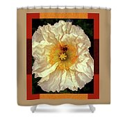 Honey Bee In Stunning White And Gold Flower Shower Curtain