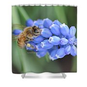 Honey Bee On Blue Flowers Shower Curtain