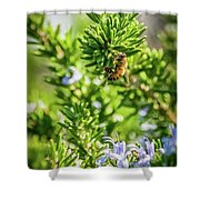 Honey Bee On Bush Shower Curtain