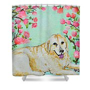 Honey Flowers Everyday Shower Curtain