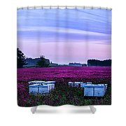Honey In The Making Shower Curtain