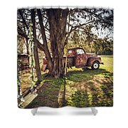 Honey, Under The Cedar Tree Shower Curtain