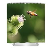 Honeybee Flying To Thistle  Shower Curtain