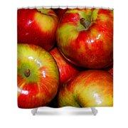 Honeycrisp Apples Shower Curtain