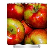 Honeycrisp Apples Shower Curtain