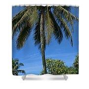 Honomaele Kahanu Gardens Hale O Piilani Ulaino Hana Maui Hawaii Shower Curtain