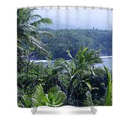 Honomaele Near Mokulehua At Hale O Piilani Heiau Hana Maui Hawaii Shower Curtain