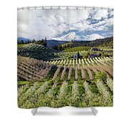 Hood River Pear Orchards On A Cloudy Day Shower Curtain