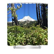 Hood View Shower Curtain