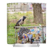 Hooded Crow With Garbage Shower Curtain