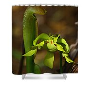Hooded Pitcher Plant Shower Curtain