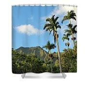 Ho'omaluhia Botanical Garden Shower Curtain