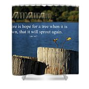 Hope For A Tree Shower Curtain by James Eddy