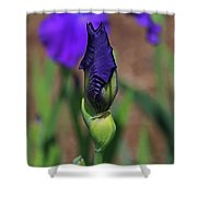 Hope Is The Soul Of The Dreamer Shower Curtain