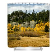 Hope Valley Shower Curtain