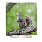 Hopes And Wishes Shower Curtain