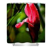 Horned Blossom Shower Curtain
