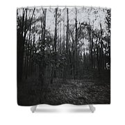 Horror In The Woods Shower Curtain