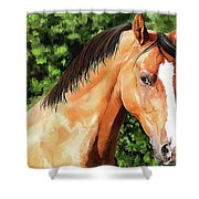 Horse 2 August 2016 Shower Curtain