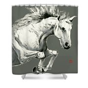Horse - 6 Shower Curtain