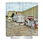 Horse And Buggie Shower Curtain