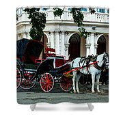 Horse And Buggy In Havana Shower Curtain