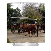 Horse And Carriage Shower Curtain