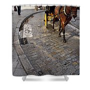 Horse And Carriage On Cobblestoned Alvarez Quintero Street In Th Shower Curtain